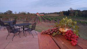 Music in the Vines@Autumn Creek Vineyards @ Autumn Creek Vineyards | Mayodan | North Carolina | United States